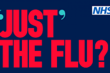 Just the Flu