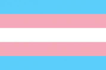 trans flag, horizontal stripes, pink, blue, white